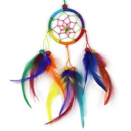 Small-Round-Rainbow-Hippy-Dreamcatcher-with-Bright-Feathers