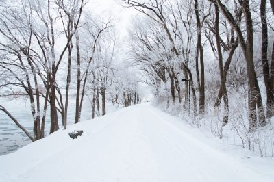 river-walk-through-the-snow-covered-trees