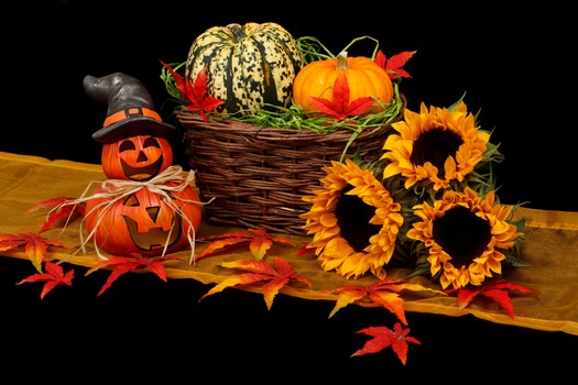 Hippy Samhain