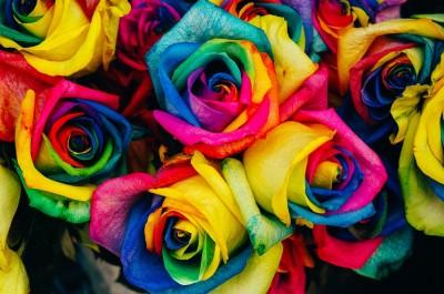 Hippy Flower Power
