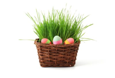 Ostara Painted Eggs in basket with Grass