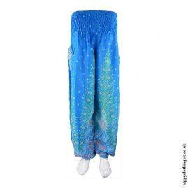 Turquoise-Hippy-Harem-Genie-Pants