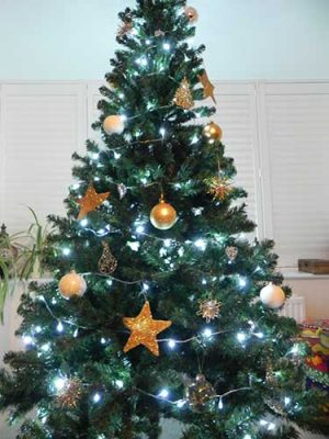 Top Tips For a Sustainable Christmas - Xmas Tree